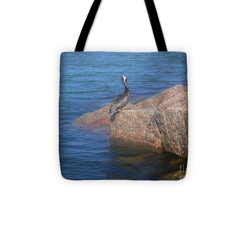 Nature Tote Bag featuring the photograph Being One With The Gulf - Ignoring by Lucyna A M Green