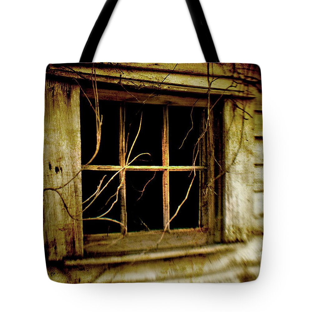Lensbaby Tote Bag featuring the photograph Bella Finestra by Scott Pellegrin