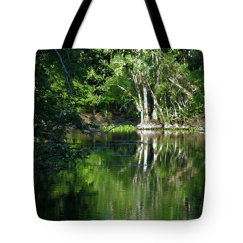 Ocklawaha River Tote Bag featuring the photograph Bend Of The Ocklawaha River by Bob Johnson