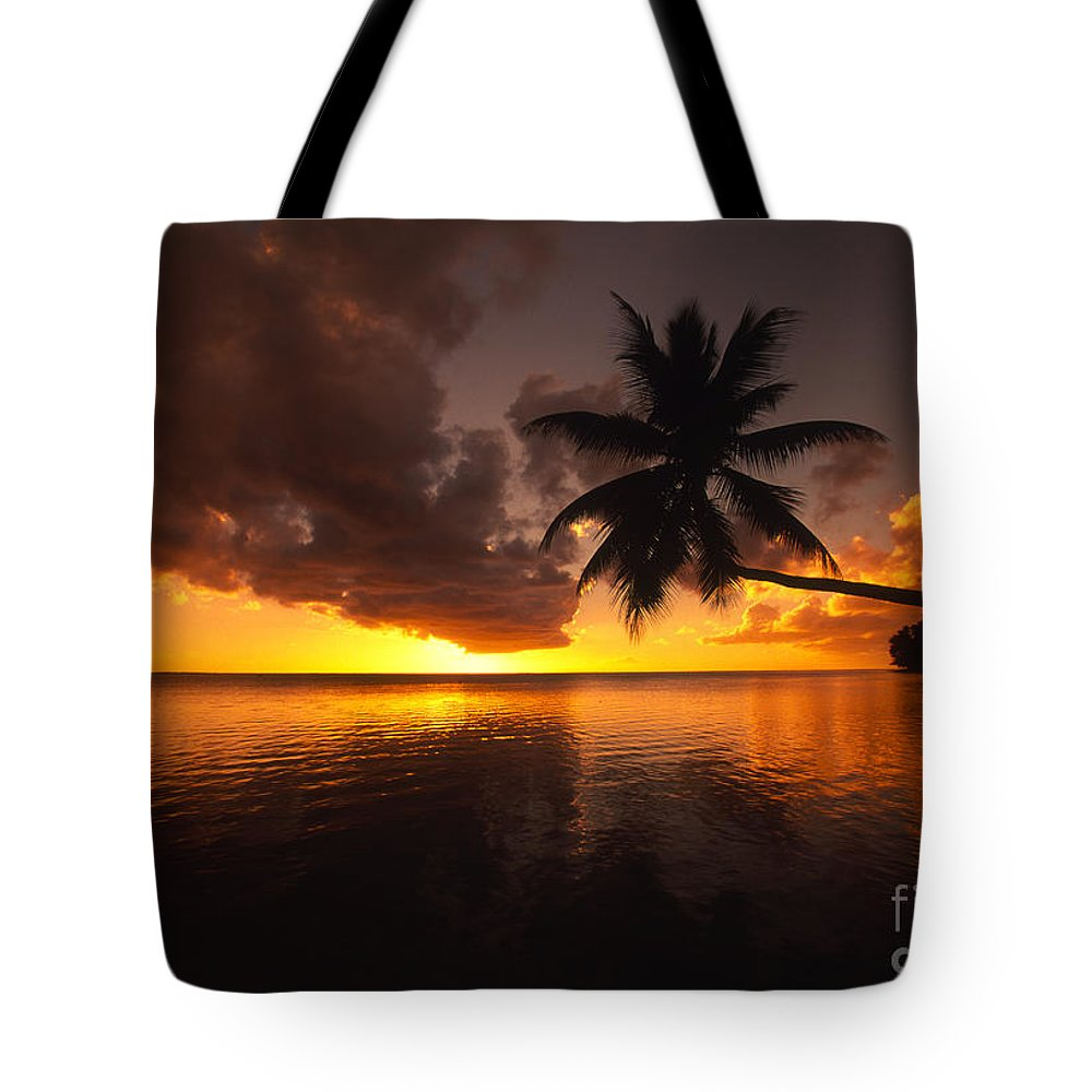 Bent Tote Bag featuring the photograph Bending Palm by Ron Dahlquist - Printscapes