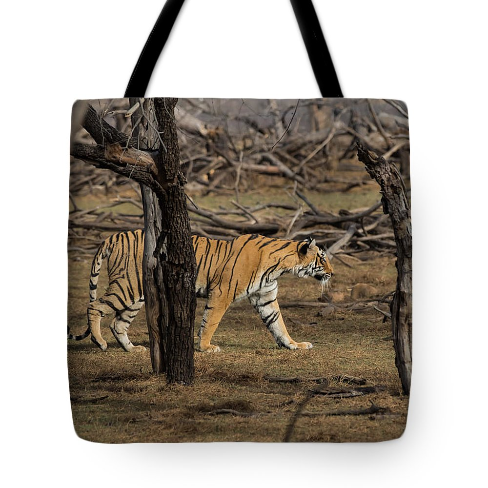 Animal Tote Bag featuring the photograph Bengal Tigress by Ramabhadran Thirupattur