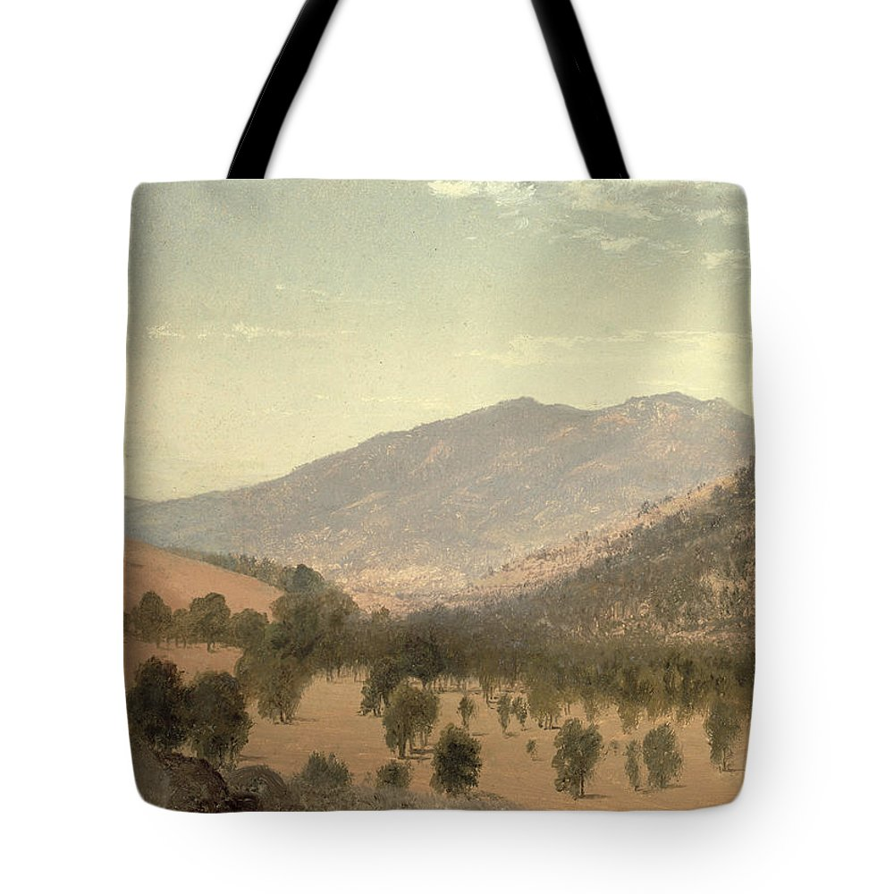 Bergen Park Tote Bag featuring the painting Bergen Park by John Frederick Kensett