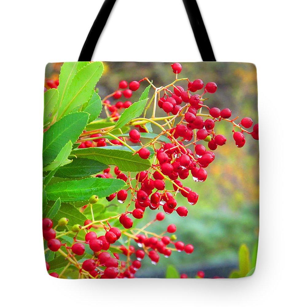 Macro Tote Bag featuring the photograph Berries Macro by Amie Ebert