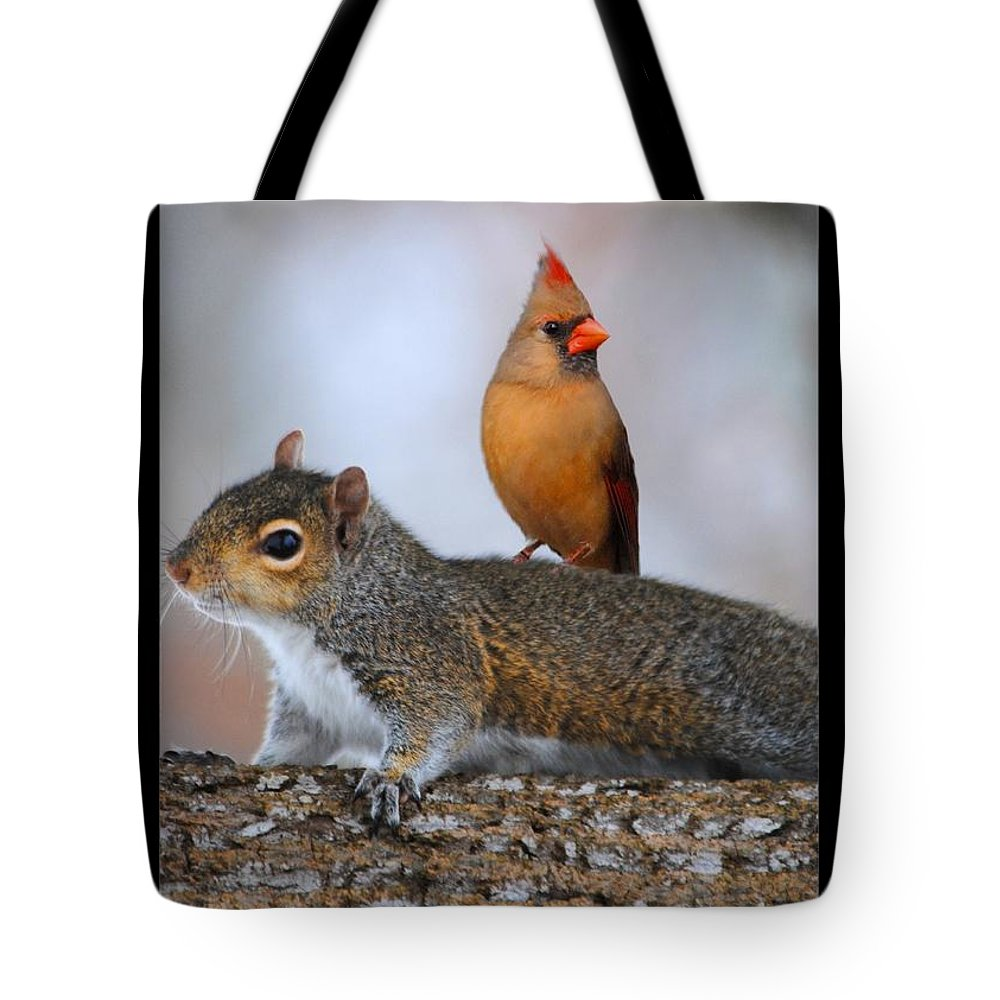Squirrel Tote Bag featuring the photograph Best Buds by Jai Johnson