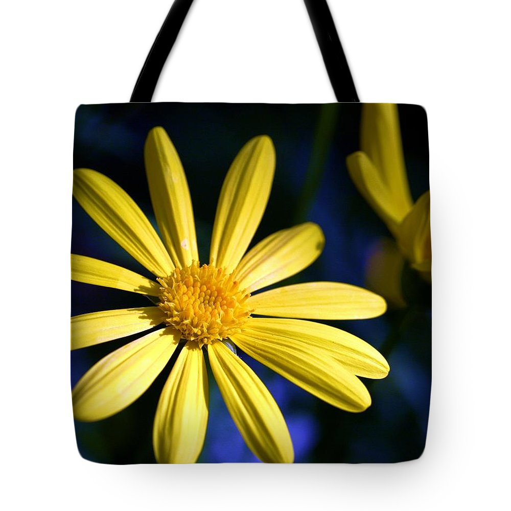 Flower Tote Bag featuring the photograph Best Day by Mitch Cat