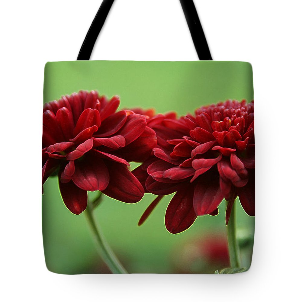 Best Friends Tote Bag featuring the photograph Best Friends by Linda Sannuti