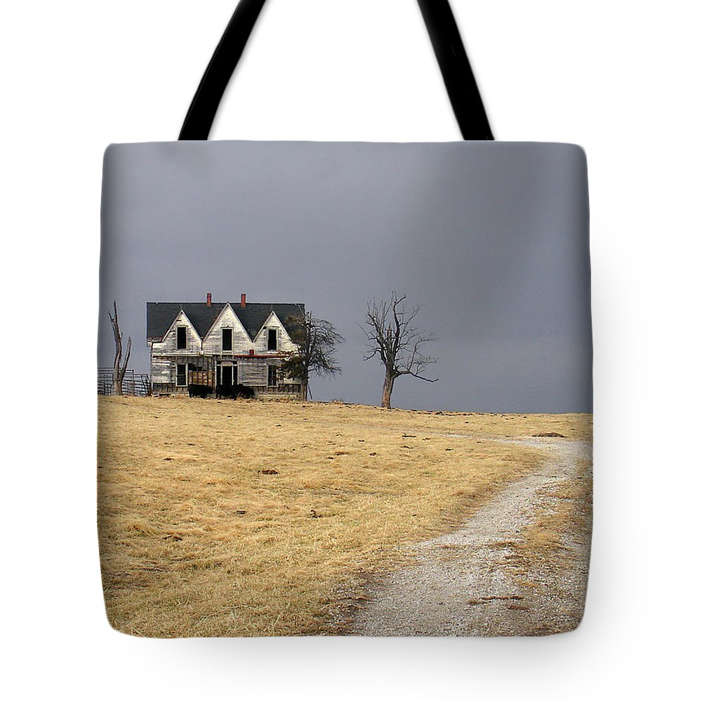 Landscape Tote Bag featuring the photograph Better Days by Steve Karol