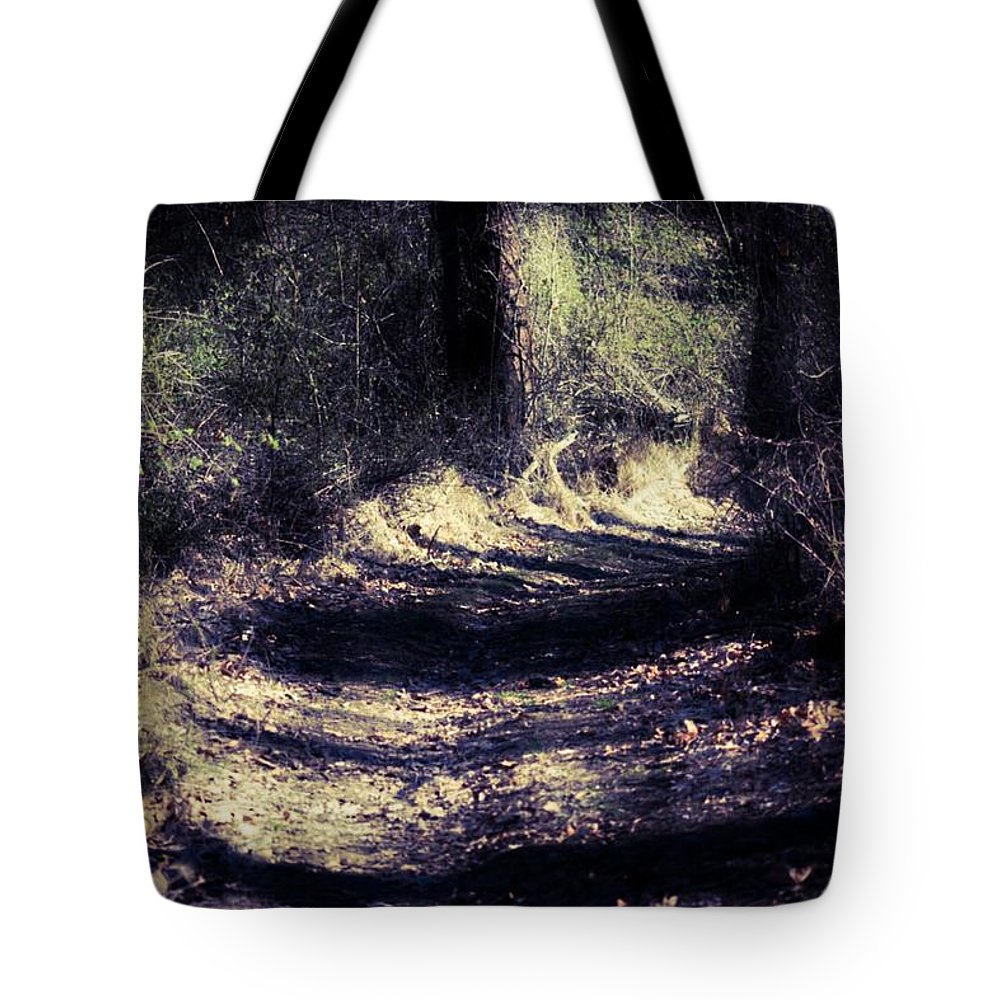 Nature Tote Bag featuring the photograph Between The Pines by Shelley Smith