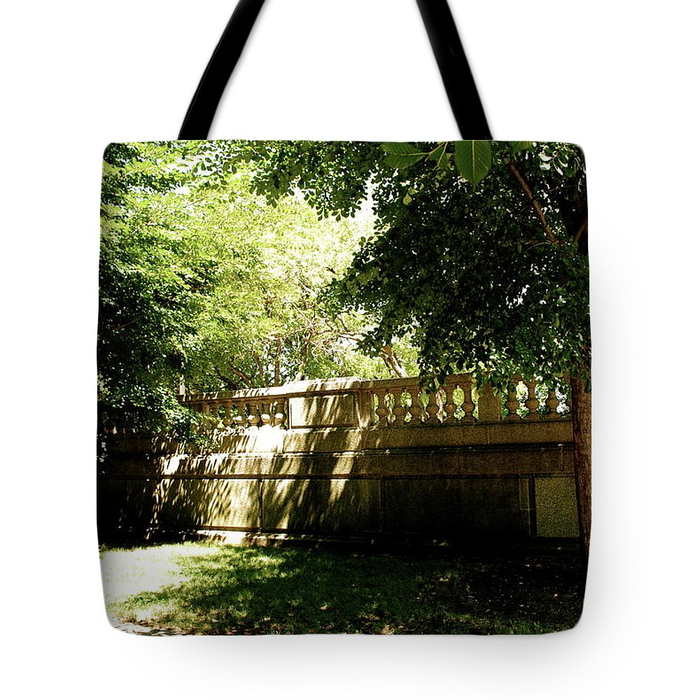 Park Tote Bag featuring the photograph Between Two Worlds by Margaret Fronimos