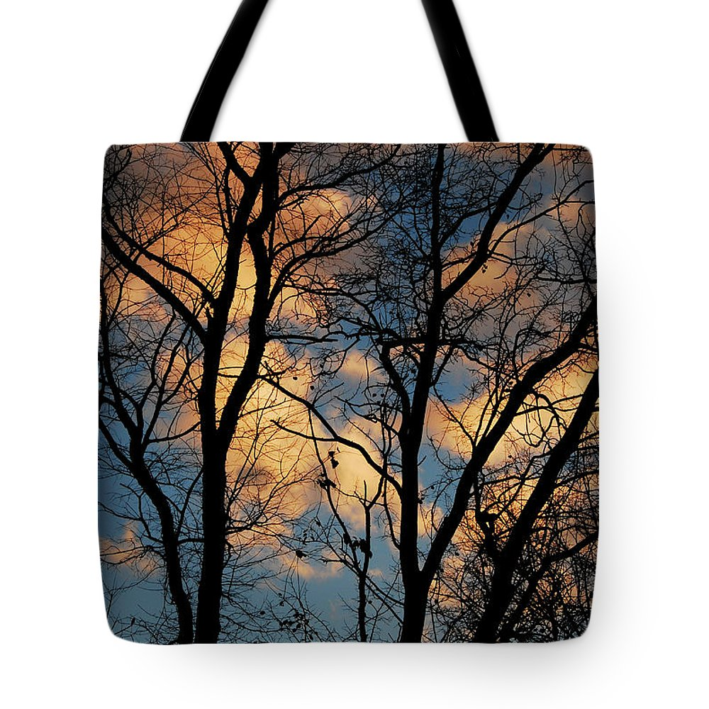 Landscape Tote Bag featuring the photograph Beyond The Trees by Lori Tambakis