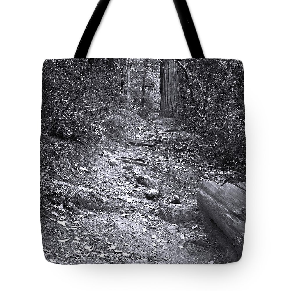 Landscape Tote Bag featuring the photograph Big Basin Redwoods Sp 1 by Karen W Meyer