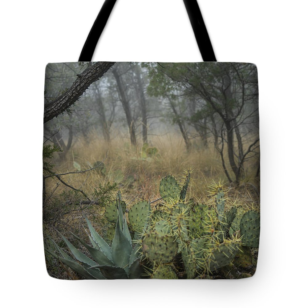 Landscape Tote Bag featuring the photograph Big Bend Fog On Lost Mines Trail by Saundra Salter