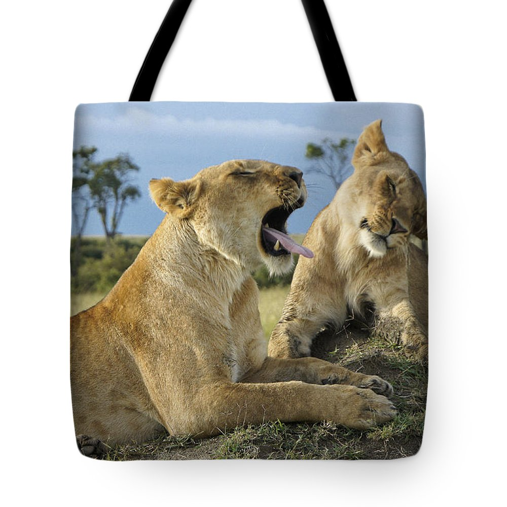 Africa Tote Bag featuring the photograph Big Blast by Michele Burgess