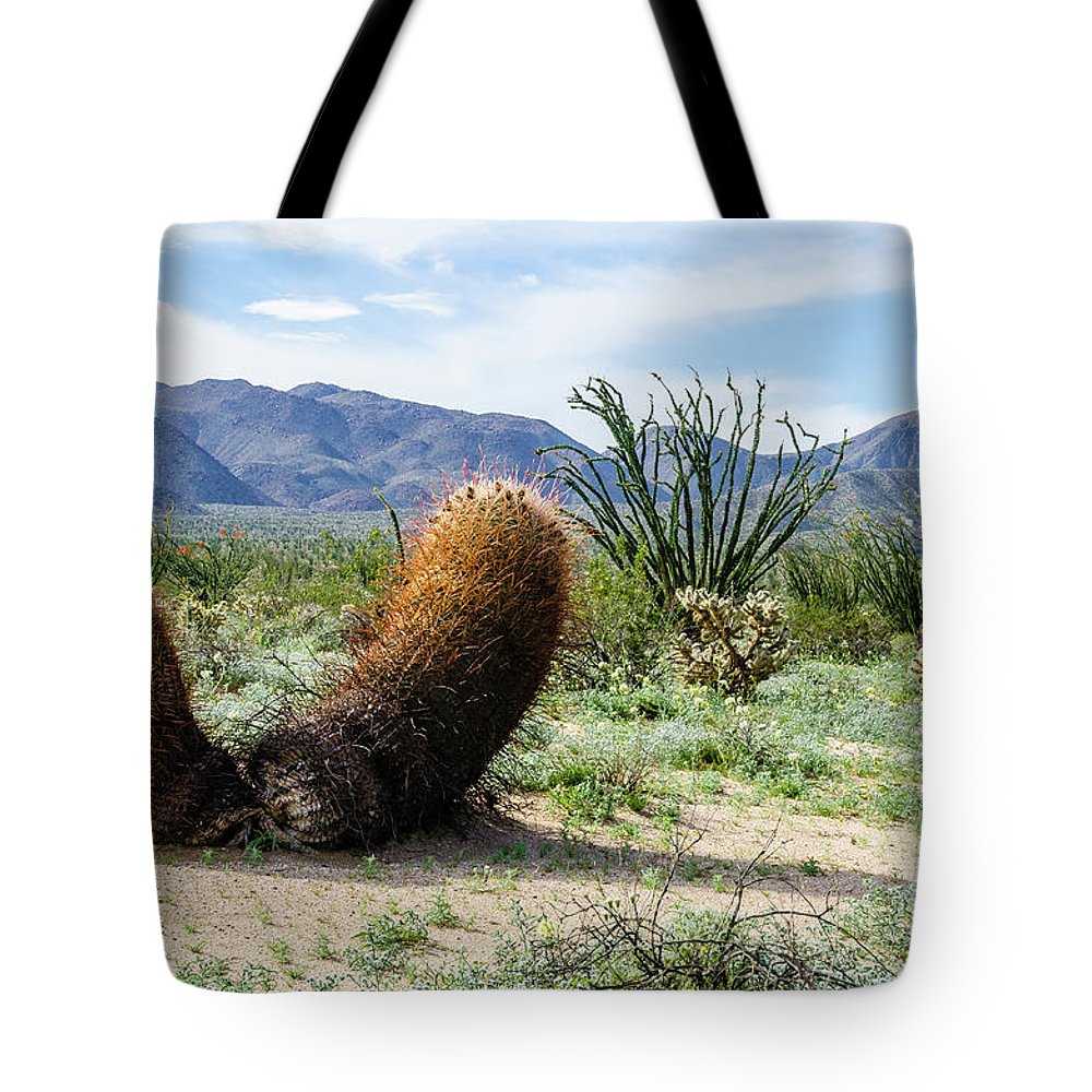 Wildflowers Tote Bag featuring the photograph Big Budda by Jerry Sellers