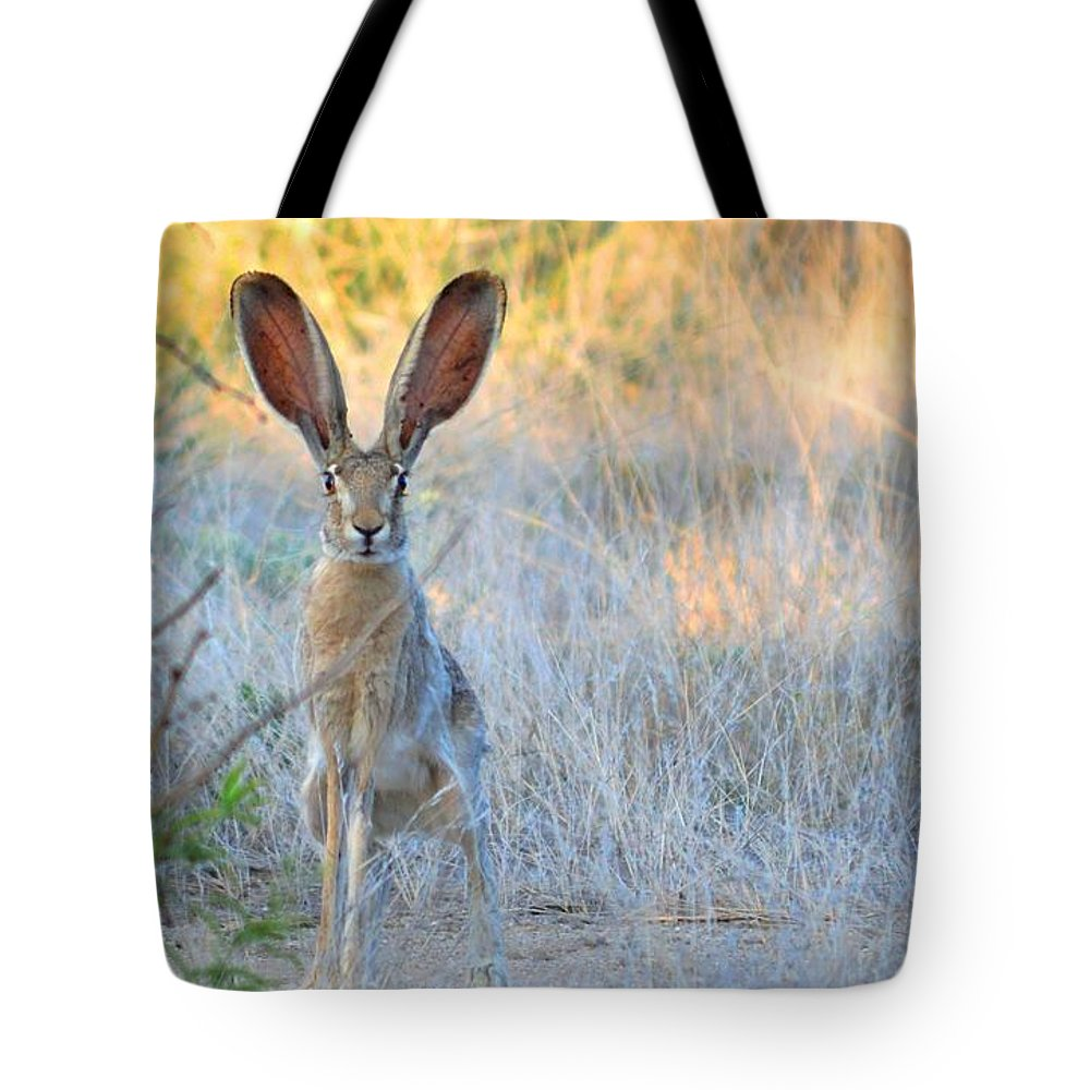 Jack Tote Bag featuring the photograph Big Jack by Brent Hall