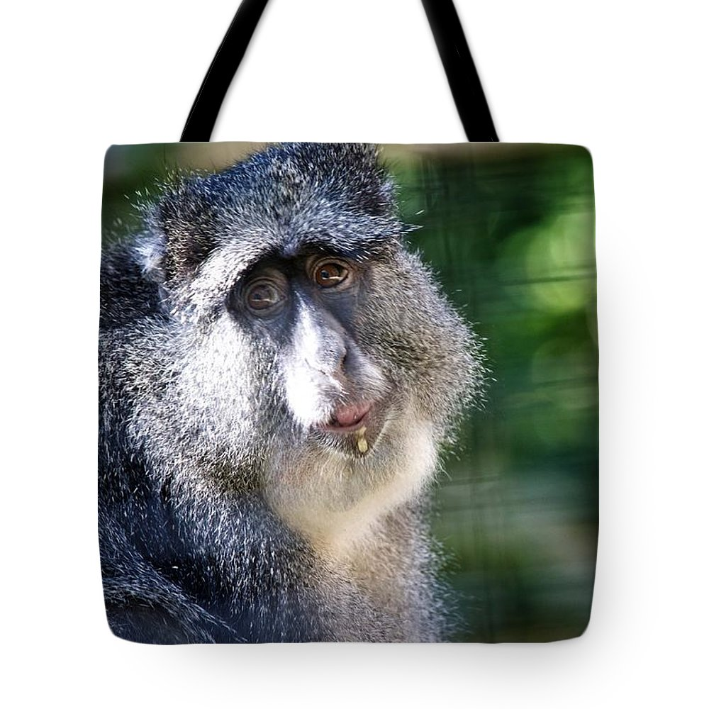 Monkey Tote Bag featuring the photograph Big Lunch by Joseph Caban