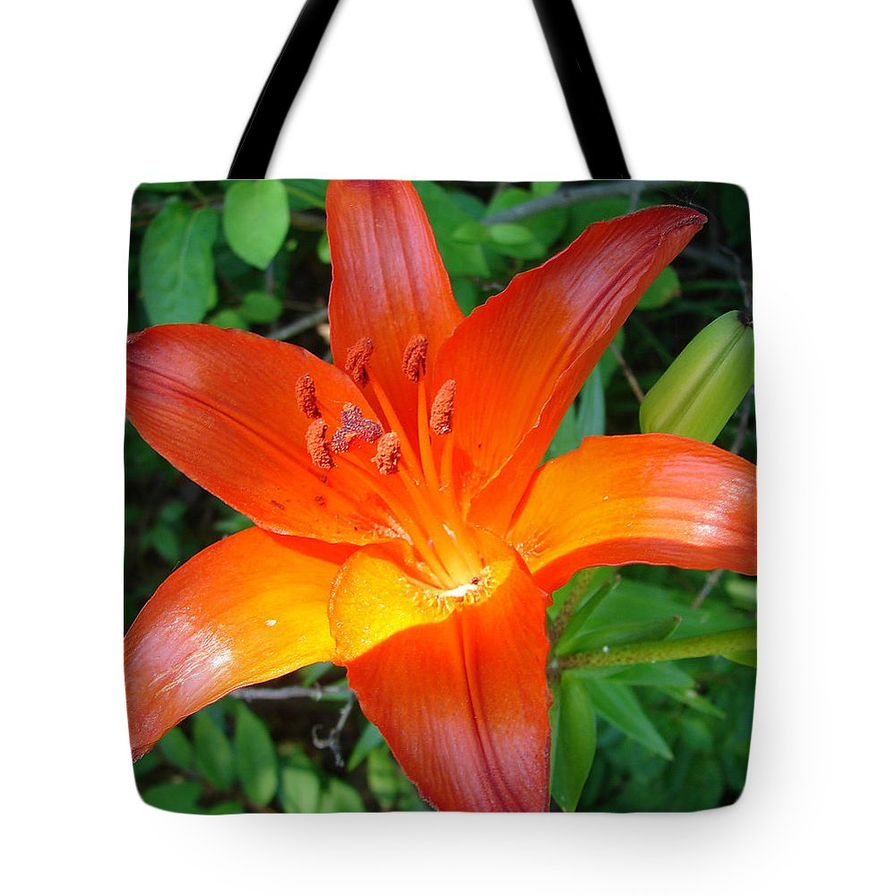 Orange Flower Yellow Tote Bag featuring the photograph Big Orange by Luciana Seymour