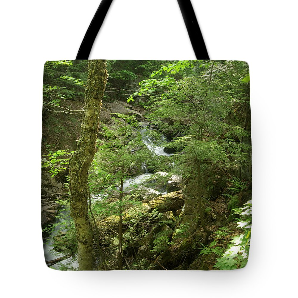 Big Pup Tote Bag featuring the photograph Big Pupfalls 4294 by Michael Peychich