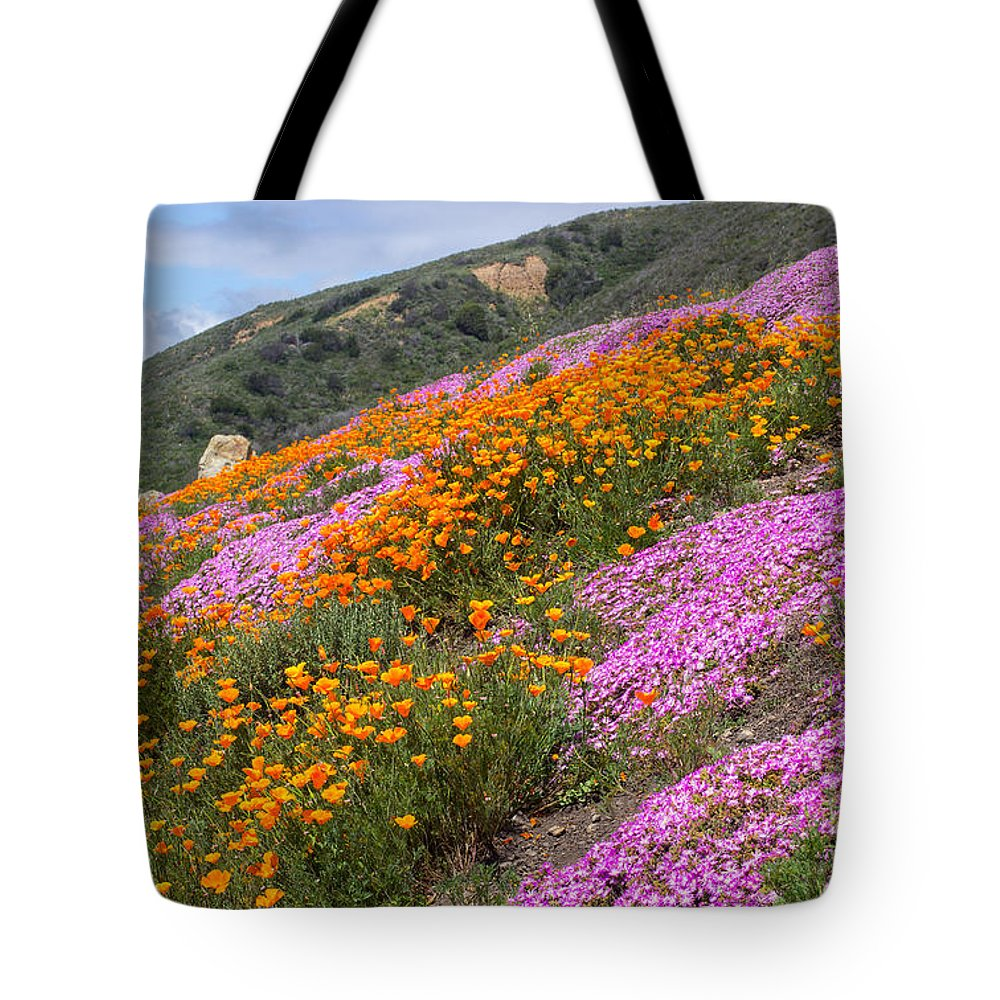 Flowers Tote Bag featuring the photograph Big Sur Spring by Kris Hiemstra