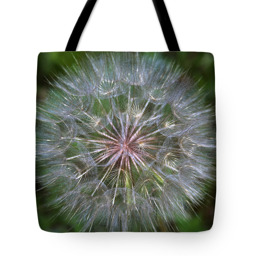 Dandelion Tote Bag featuring the photograph Big Wish by Linda Sannuti