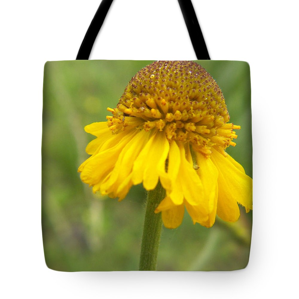 Flower Tote Bag featuring the photograph Bigelow by Amy Fose