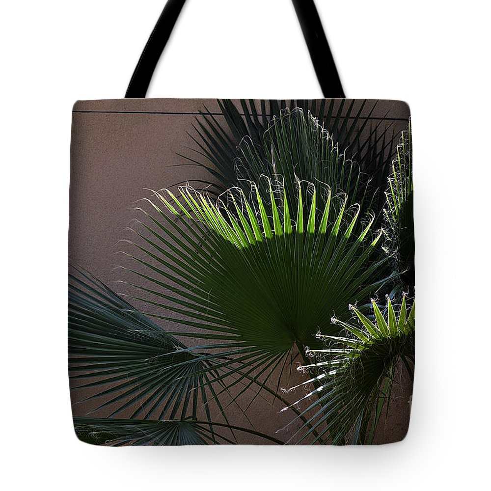Clay Tote Bag featuring the photograph Biggest Fans by Clayton Bruster