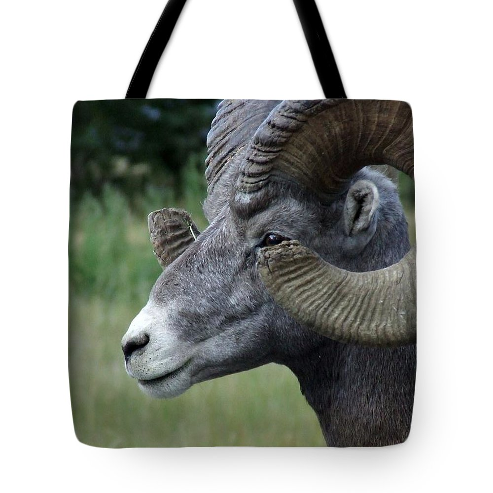 Big Horned Ram Tote Bag featuring the photograph Bighorned Ram by Tiffany Vest