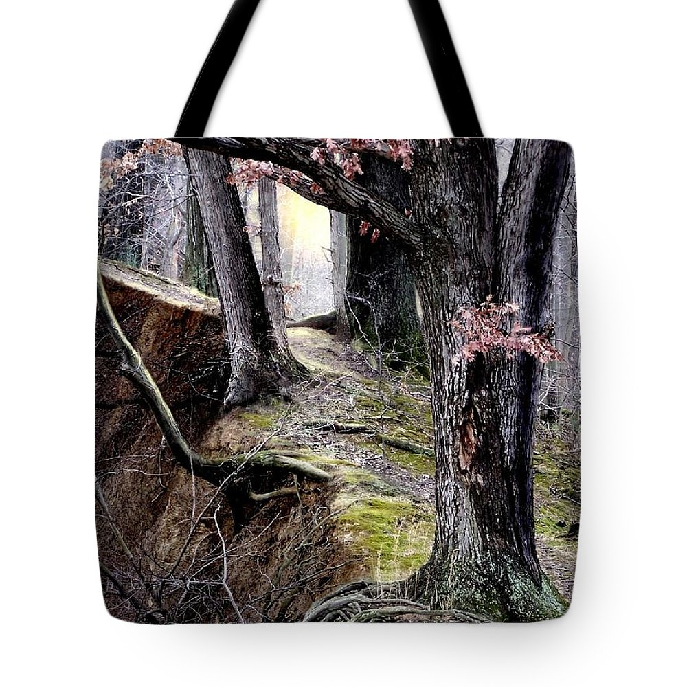 Nature Tote Bag featuring the digital art Bilbow's Path by Bill Stephens