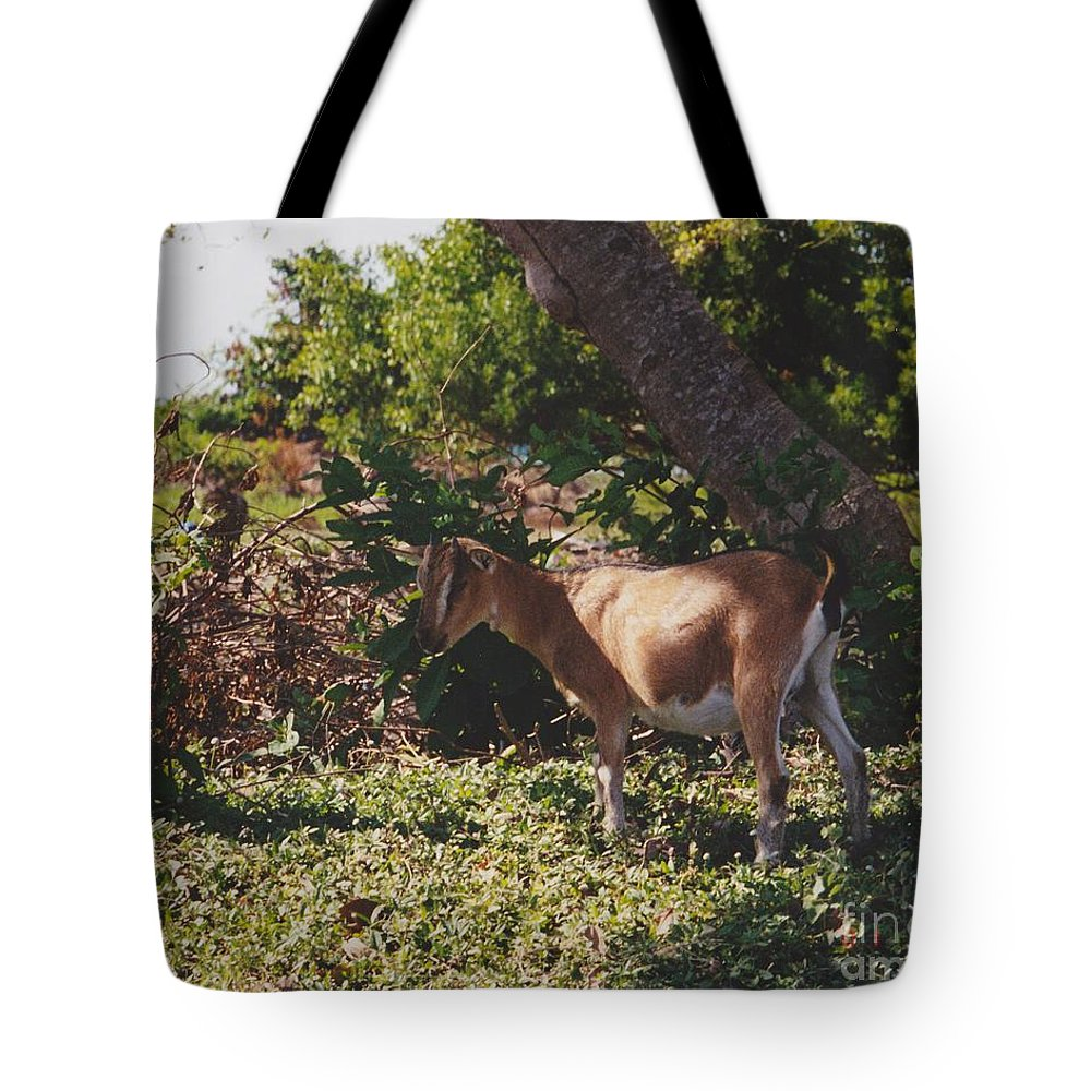Art Tote Bag featuring the photograph Billy Goat by Michelle Powell