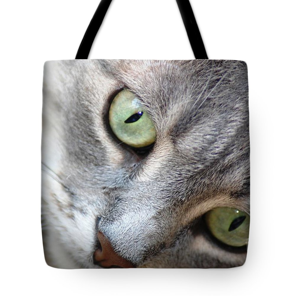 Cat Tote Bag featuring the photograph Binkster by Donna Bentley