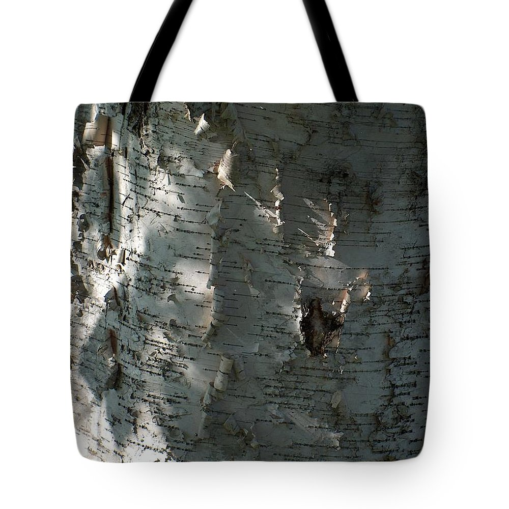 Tree Tote Bag featuring the photograph Birch Bark In Sun And Shadow by Denise  Hoff