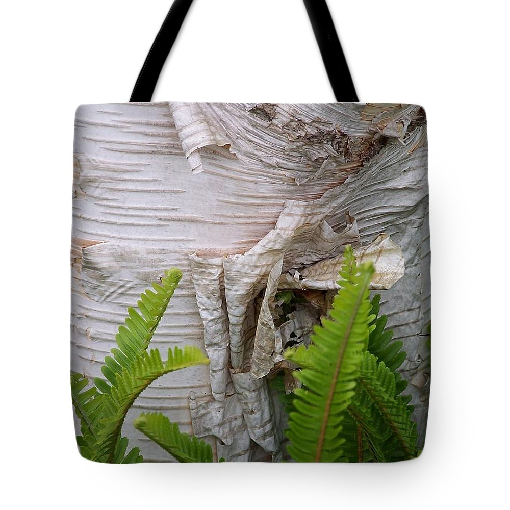 Tree Tote Bag featuring the photograph Birch Fern by Gale Cochran-Smith