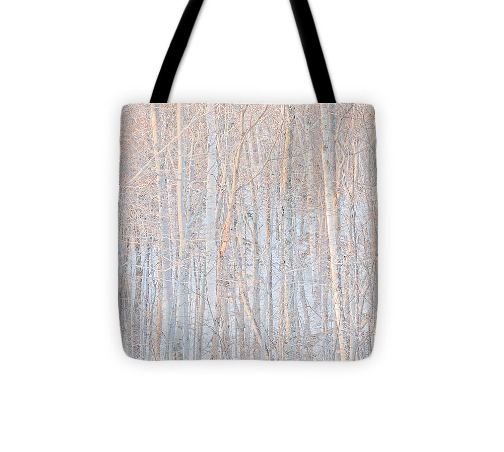 Stratton Tote Bag featuring the photograph Birch Sunset by John Stuart