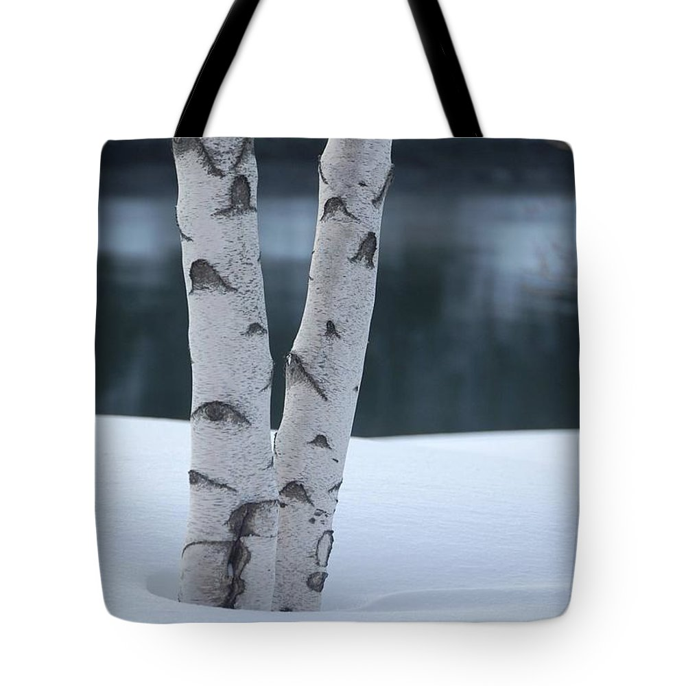 Birch Tote Bag featuring the photograph Birch Twins In Snow by Faith Harron Boudreau