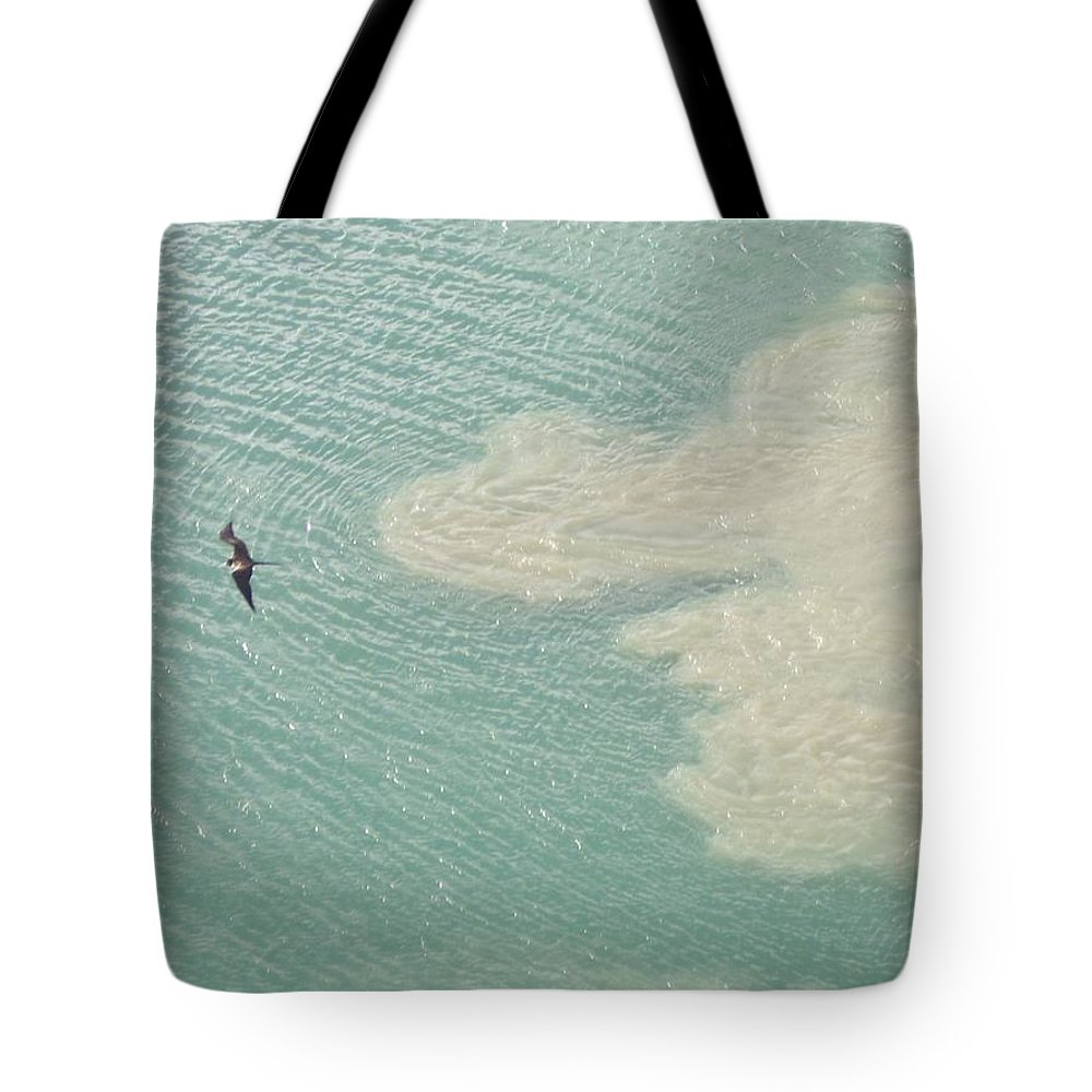Bird Tote Bag featuring the photograph Bird And Churning Sand by Michelle Miron-Rebbe