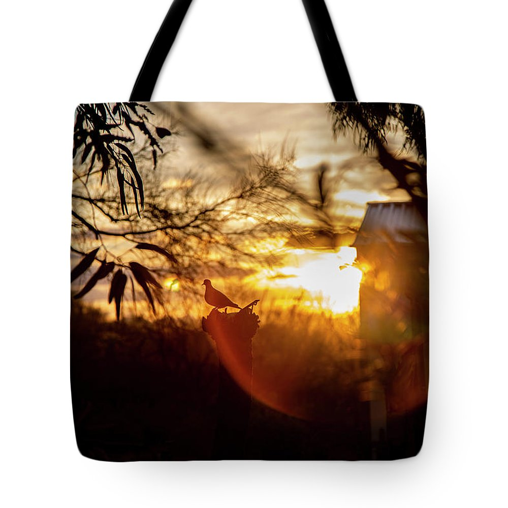 Bird Tote Bag featuring the photograph Bird At Sunset Color by Fine Art