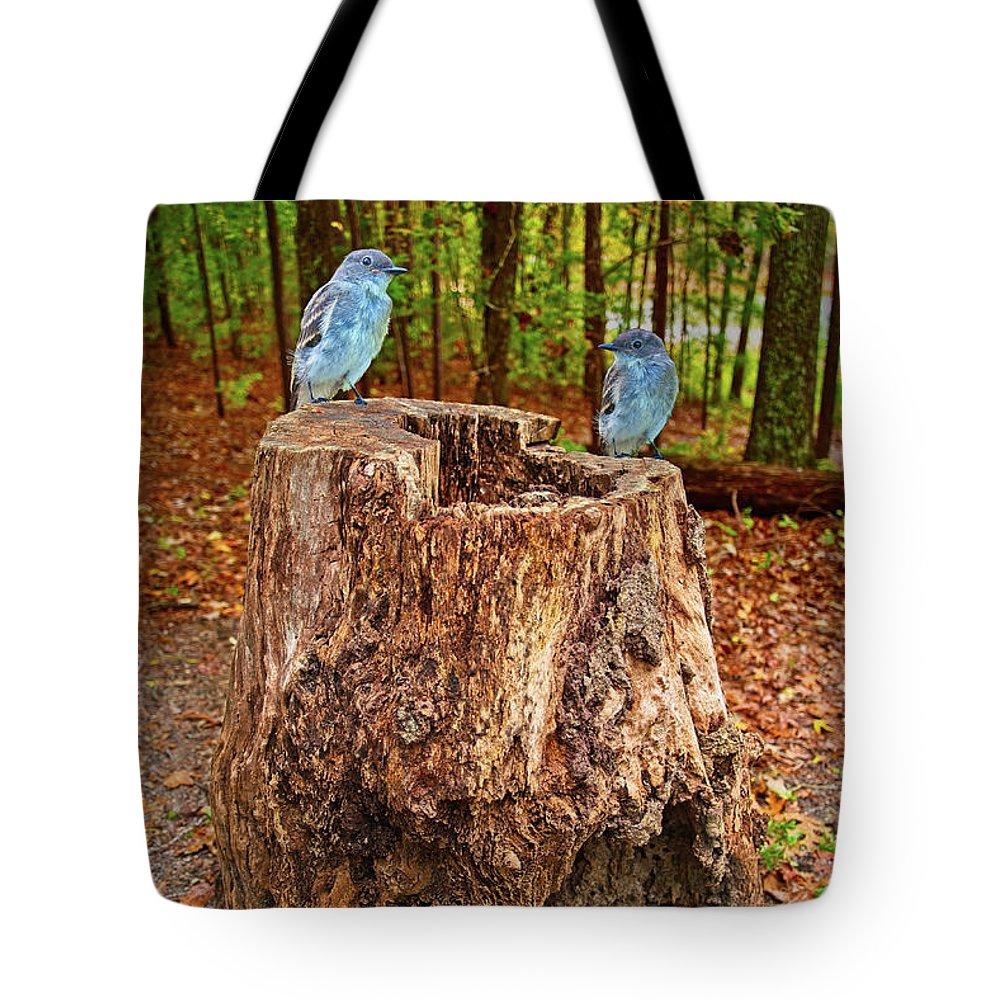 Birds Tote Bag featuring the photograph Bird Gossip by Sandra Burm