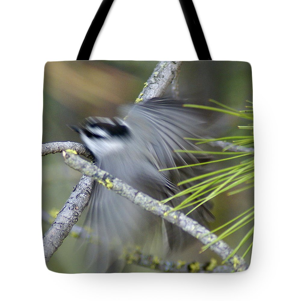 Birds Tote Bag featuring the photograph Bird In Action by Ben Upham III