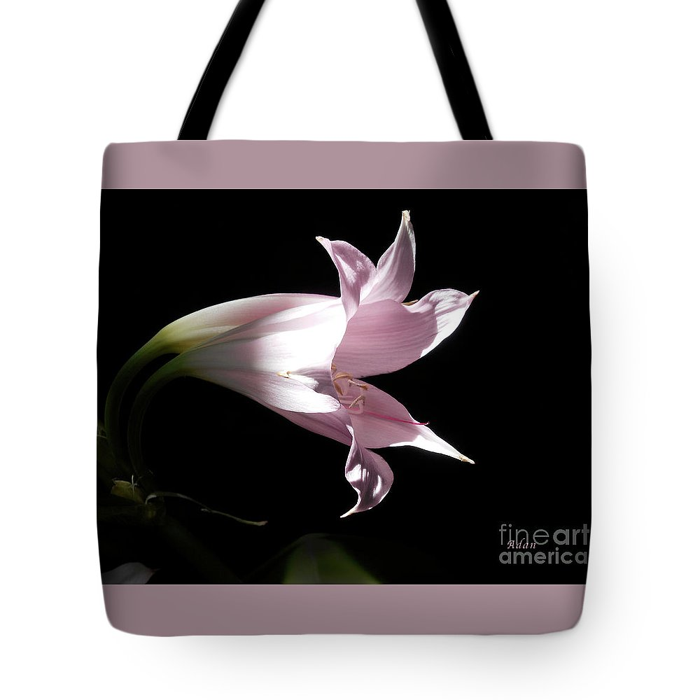 Lily Tote Bag featuring the photograph Lovely Lilies Bird In Flight by Felipe Adan Lerma