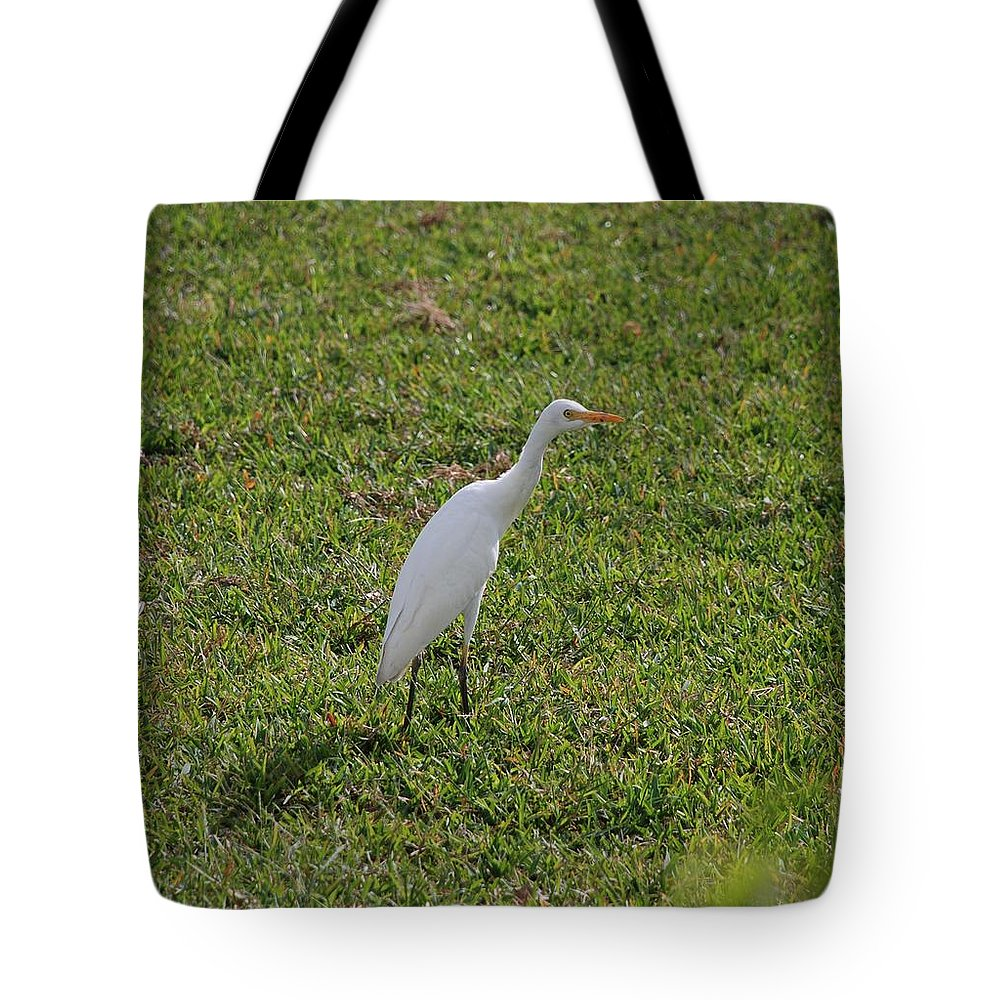 White Bird Tote Bag featuring the photograph Bird Is The Word by Rob Hans