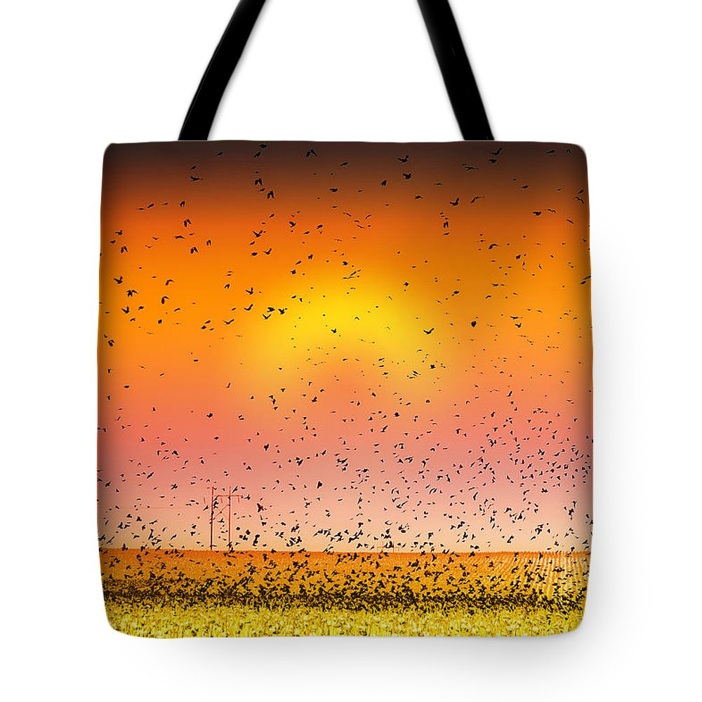 Birds Tote Bag featuring the photograph Bird Land Fine Art Color Photography Print by James BO Insogna