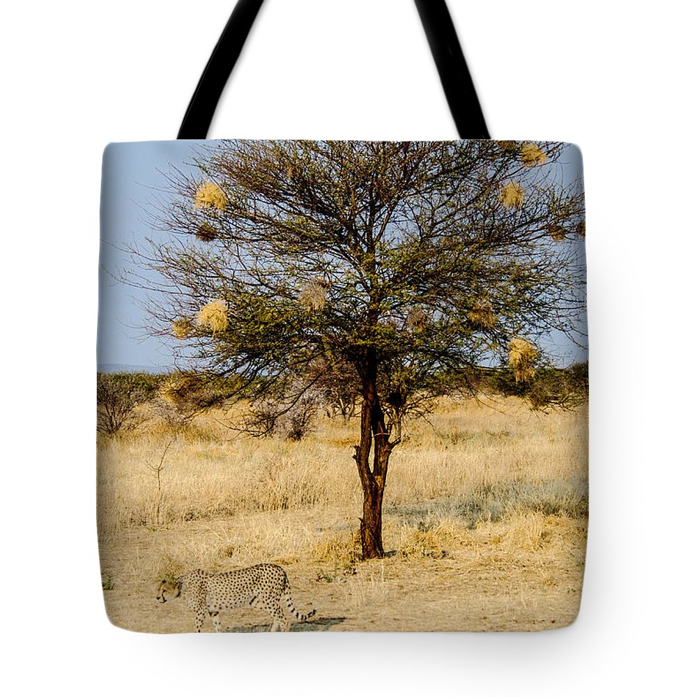 Cheetah Tote Bag featuring the photograph Bird Nests And A Cheetah by Marc Levine