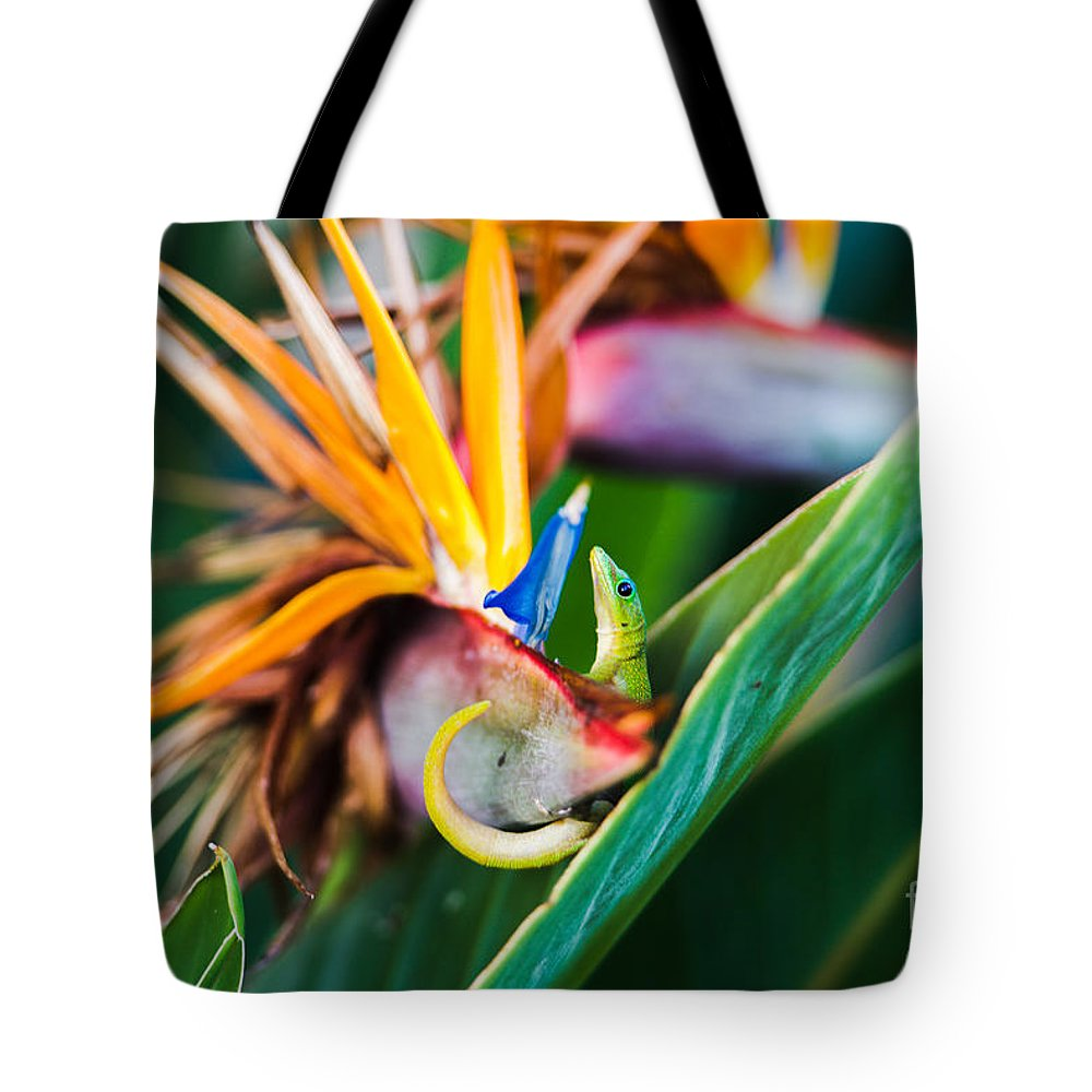 Gecko Tote Bag featuring the photograph Bird Of Paradise Gecko by Joy McAdams