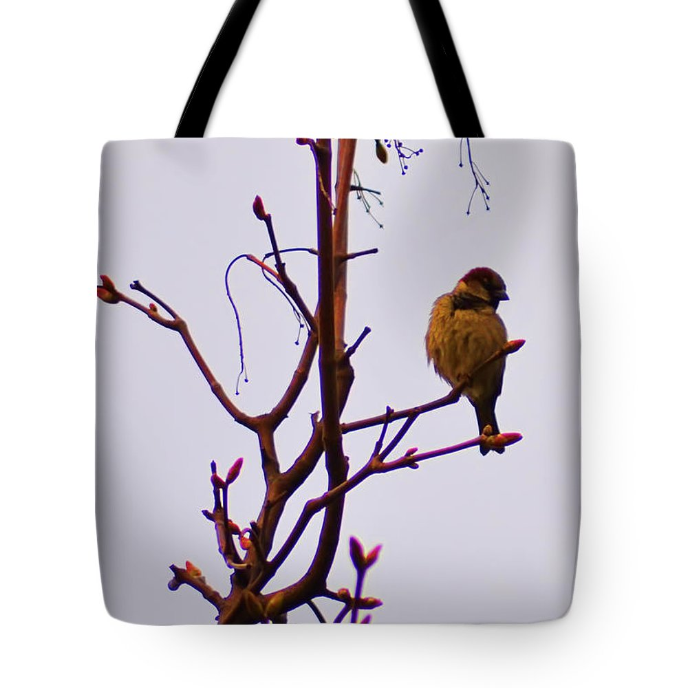 Birds Tote Bag featuring the photograph Bird On A Bud by Bill Cannon
