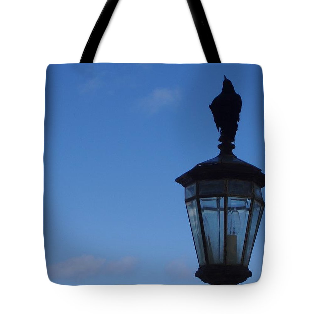 Bird Tote Bag featuring the photograph Bird On Lamplight by Deborah Crew-Johnson