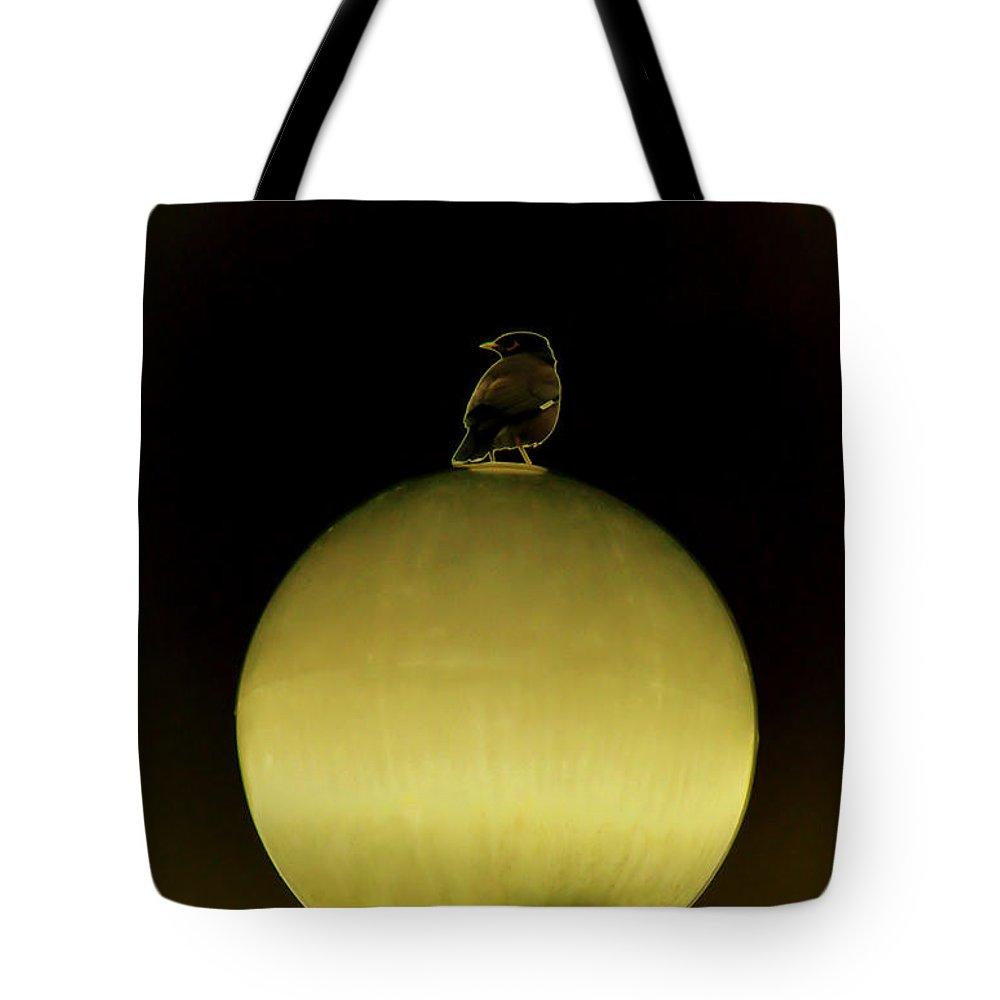 Bird Tote Bag featuring the digital art Bird On Light by Bliss Of Art