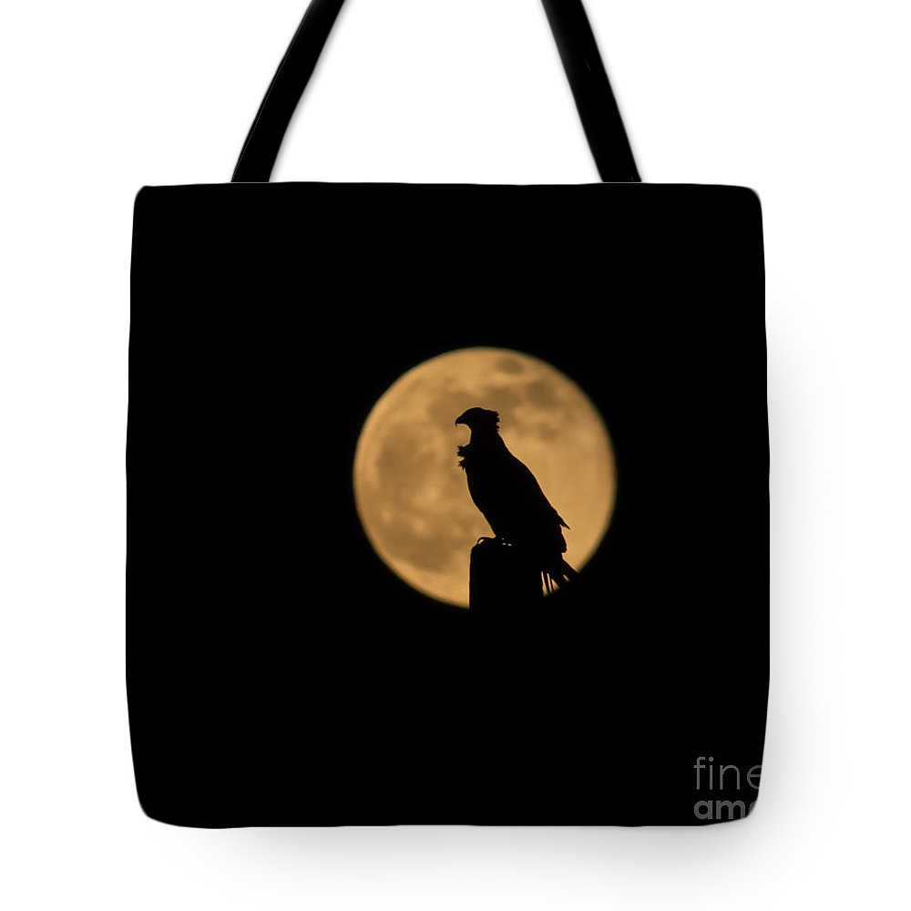 Moon Tote Bag featuring the photograph Bird Silhouette by Zina Stromberg