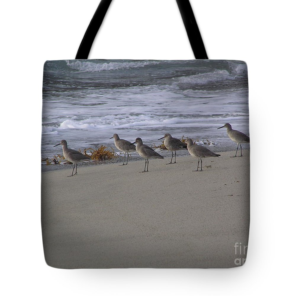 Birds Tote Bag featuring the photograph Bird Walk by Louise Magno