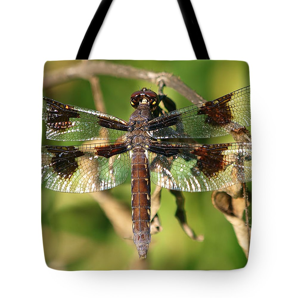 Common Whitetail Tote Bag featuring the photograph Bird's Eye View by Kala King