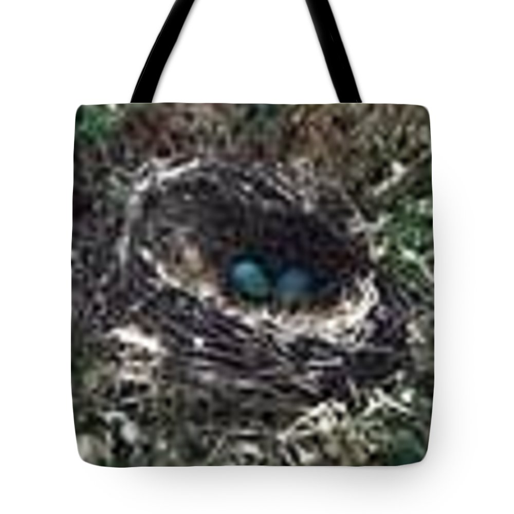Nature Tote Bag featuring the photograph Birds Nest by Kayla Reno